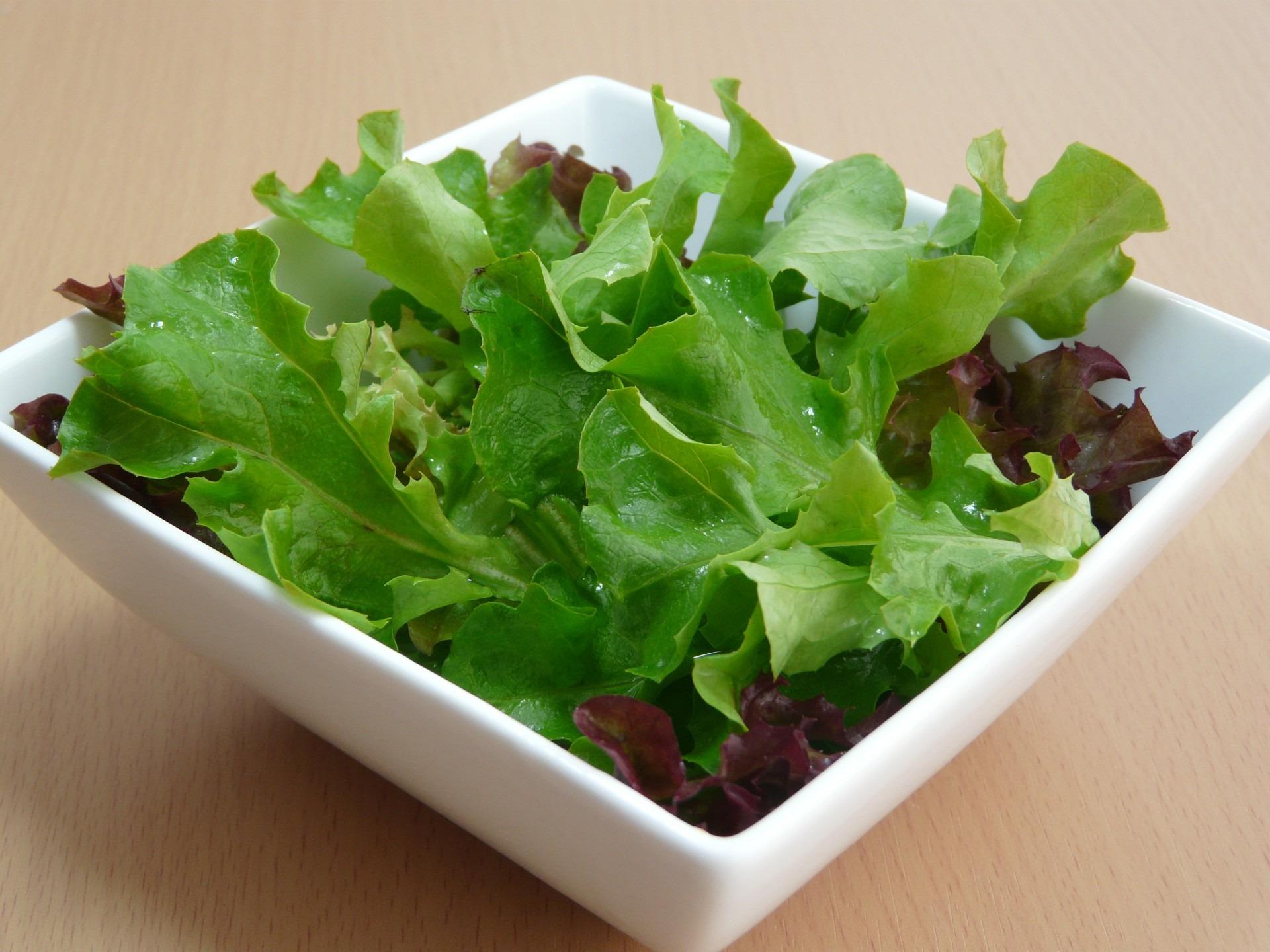 salad-164685